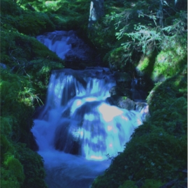 A waterfall in the forest of Sellrain