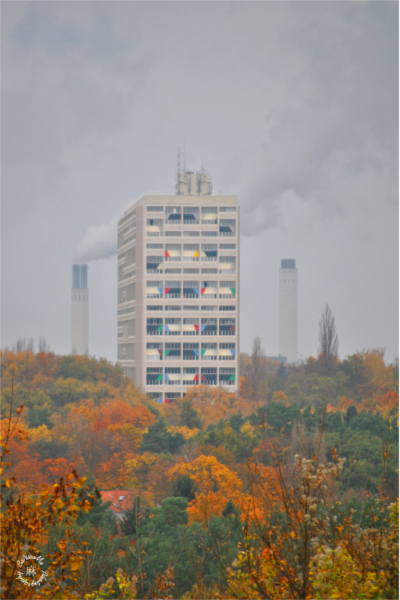 Le Corbussier and the autumn colors