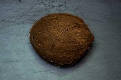 Kokosnuss, Lieferant wichtiger Öle